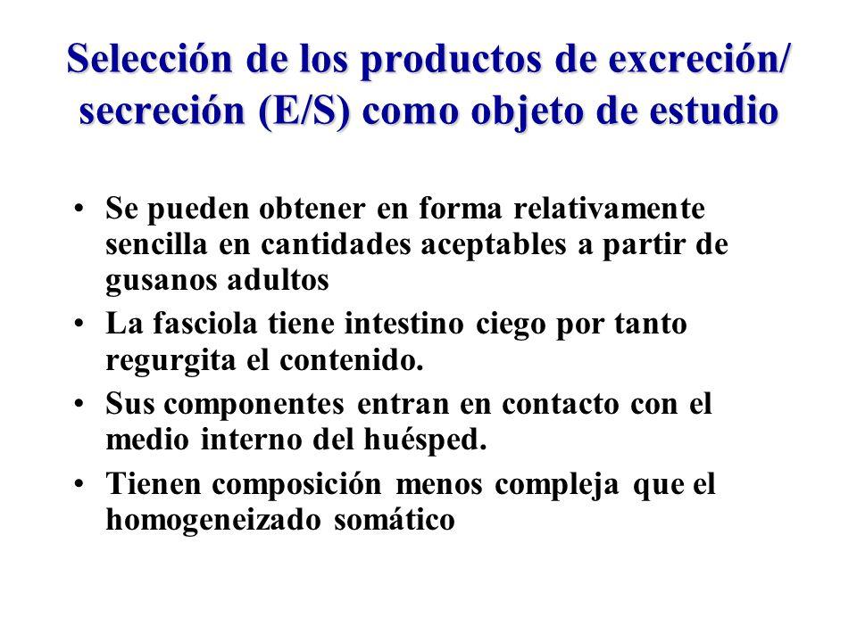 Selección de los productos de excreción/ secreción (E/S) como objeto de estudio