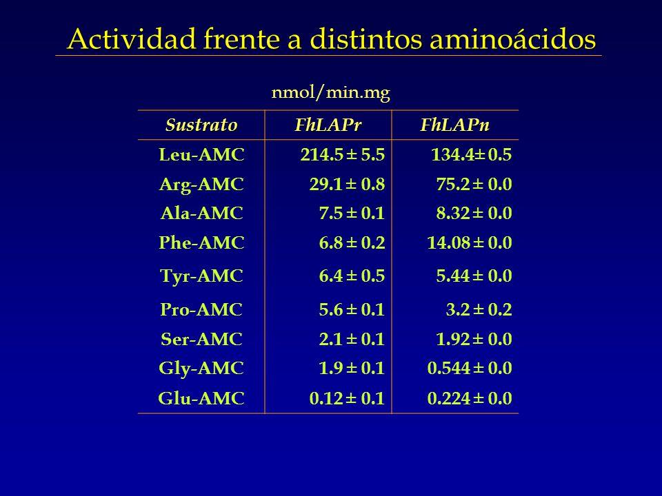 Actividad frente a distintos aminoácidos