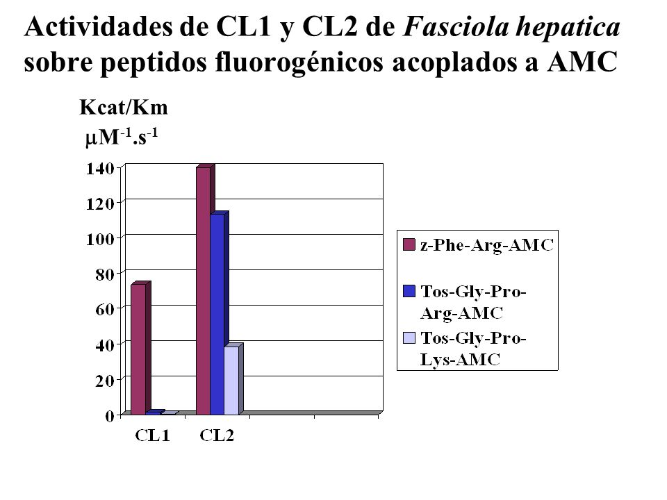 Actividades de CL1 y CL2 de Fasciola hepatica sobre peptidos fluorogénicos acoplados a AMC Kcat/Km M-1.s-1