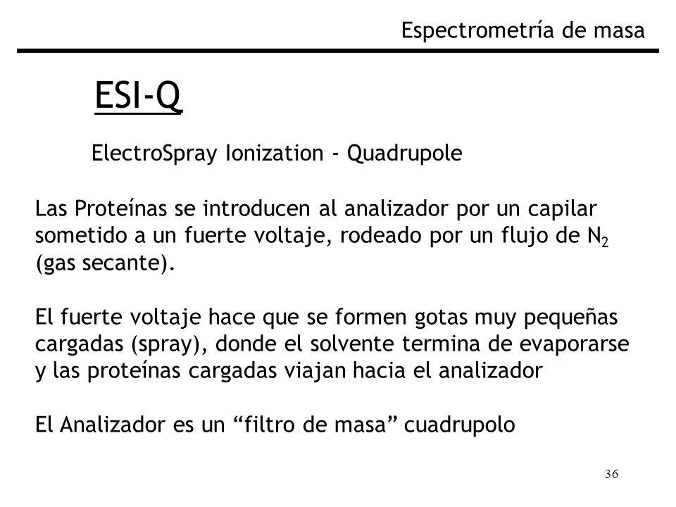 ESI-Q Espectrometría de masa ElectroSpray Ionization - Quadrupole