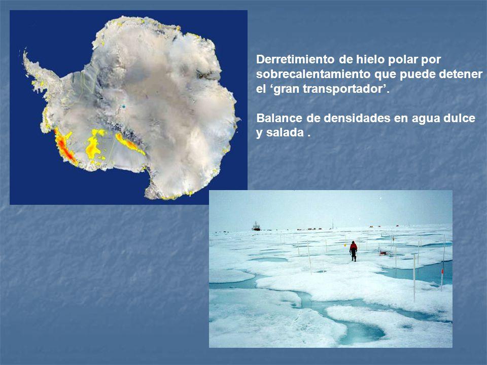 Derretimiento de hielo polar por