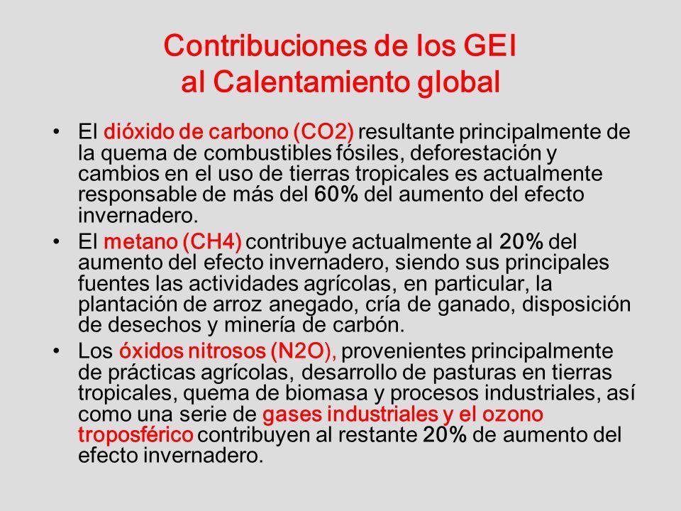 Contribuciones de los GEI al Calentamiento global