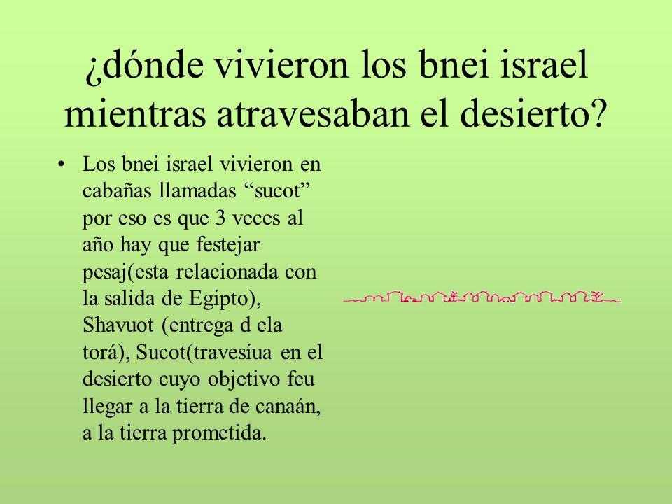 ¿dónde vivieron los bnei israel mientras atravesaban el desierto