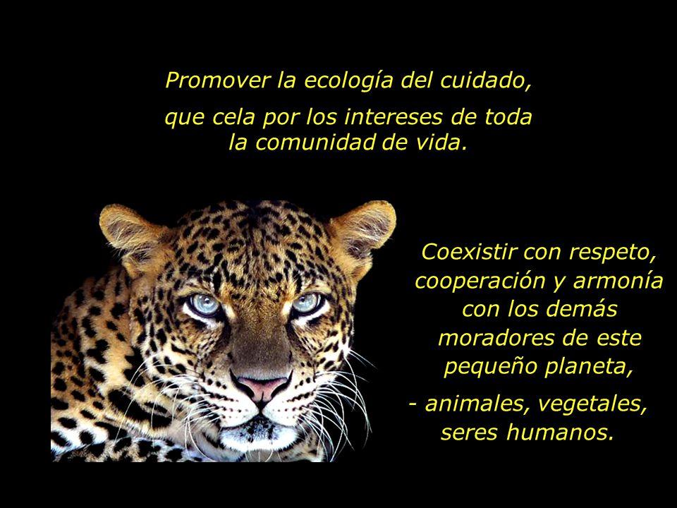 Promover la ecología del cuidado,