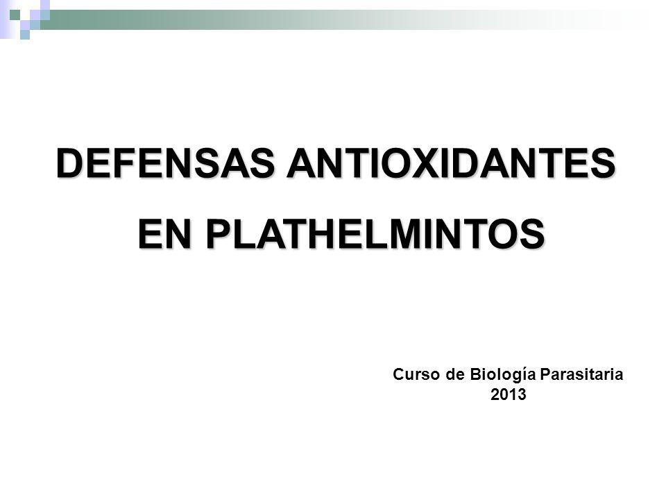 DEFENSAS ANTIOXIDANTES Curso de Biología Parasitaria