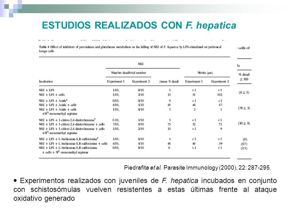 ESTUDIOS REALIZADOS CON F. hepatica