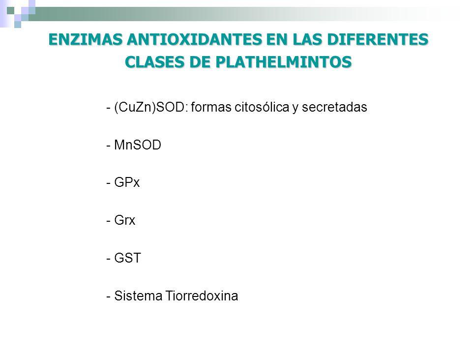 ENZIMAS ANTIOXIDANTES EN LAS DIFERENTES CLASES DE PLATHELMINTOS