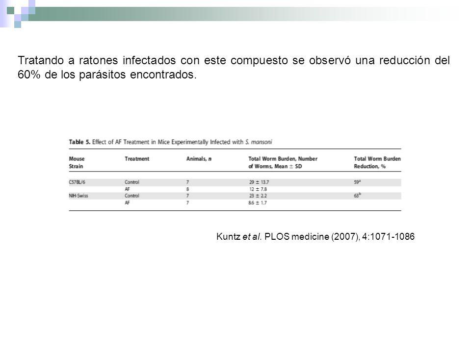 Tratando a ratones infectados con este compuesto se observó una reducción del 60% de los parásitos encontrados.