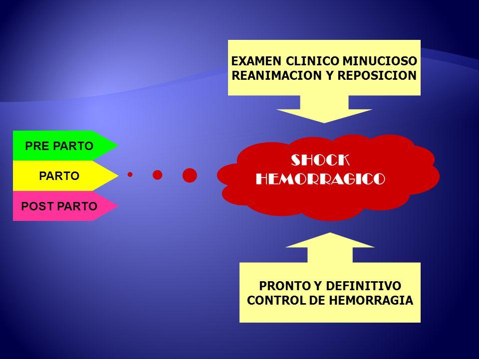 EXAMEN CLINICO MINUCIOSO REANIMACION Y REPOSICION