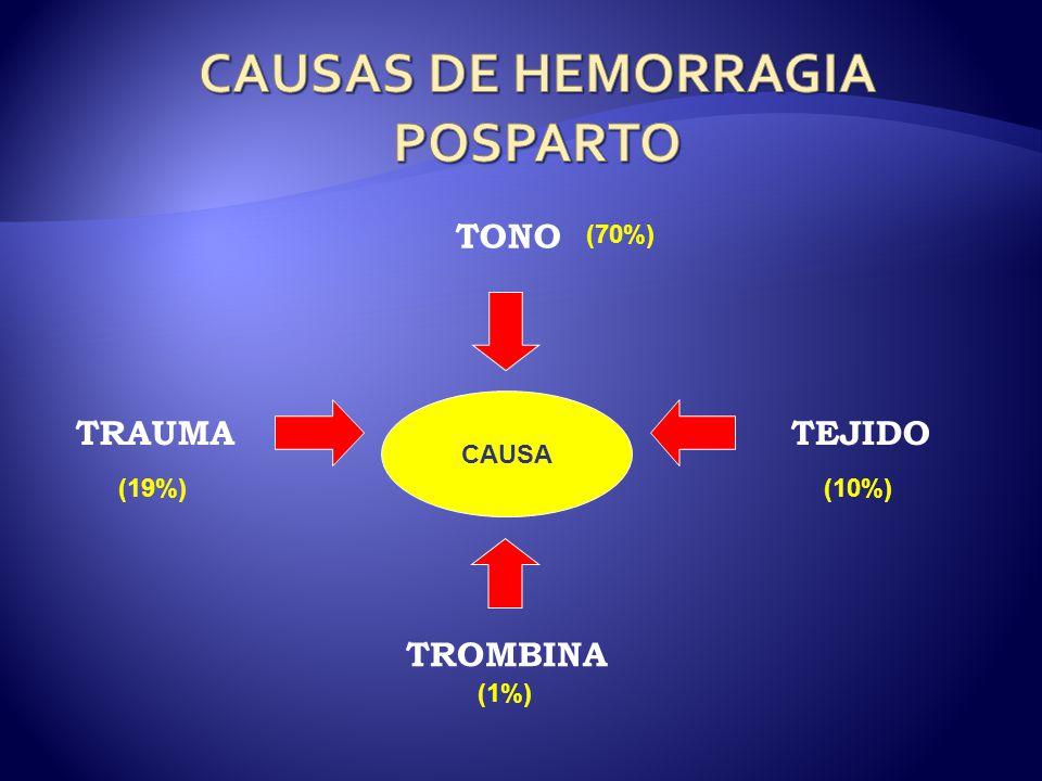 CAUSAS DE HEMORRAGIA POSPARTO