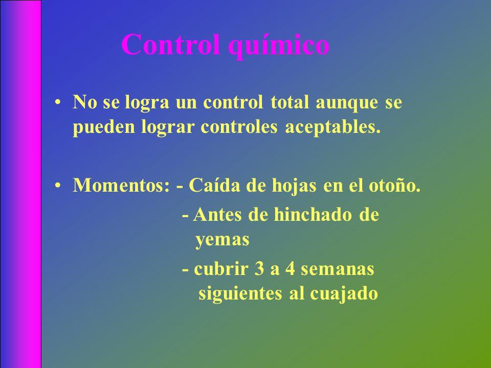 Control químico No se logra un control total aunque se pueden lograr controles aceptables. Momentos: - Caída de hojas en el otoño.