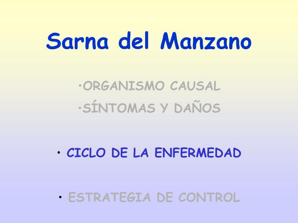 Sarna del Manzano ORGANISMO CAUSAL SÍNTOMAS Y DAÑOS