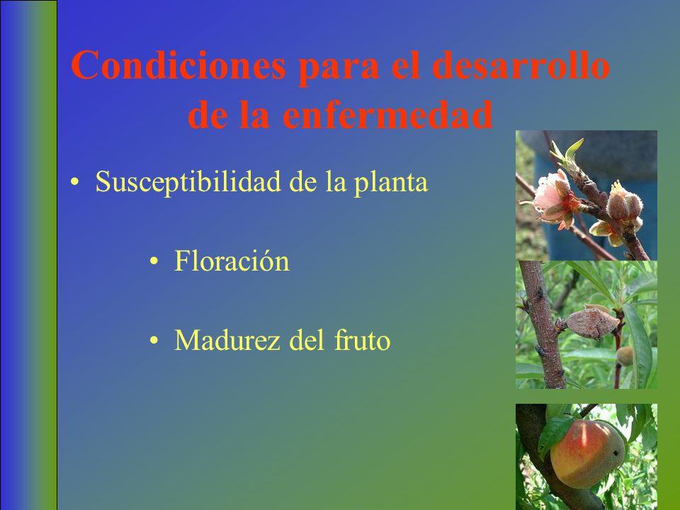 Condiciones para el desarrollo de la enfermedad