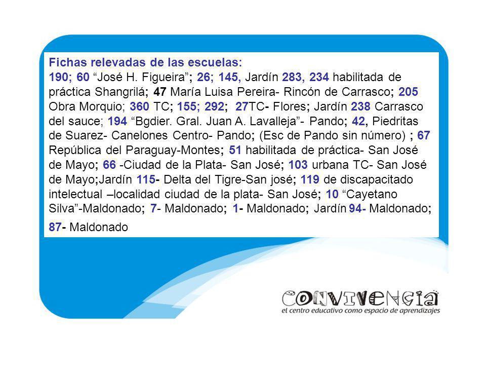 Fichas relevadas de las escuelas: