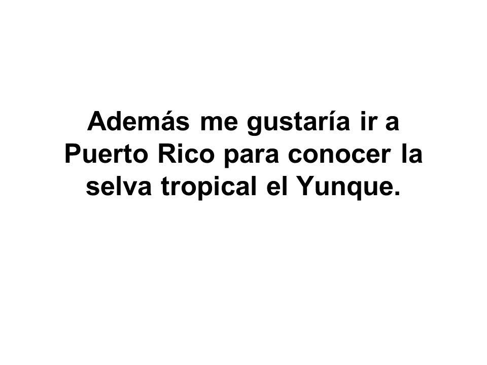 Además me gustaría ir a Puerto Rico para conocer la selva tropical el Yunque.