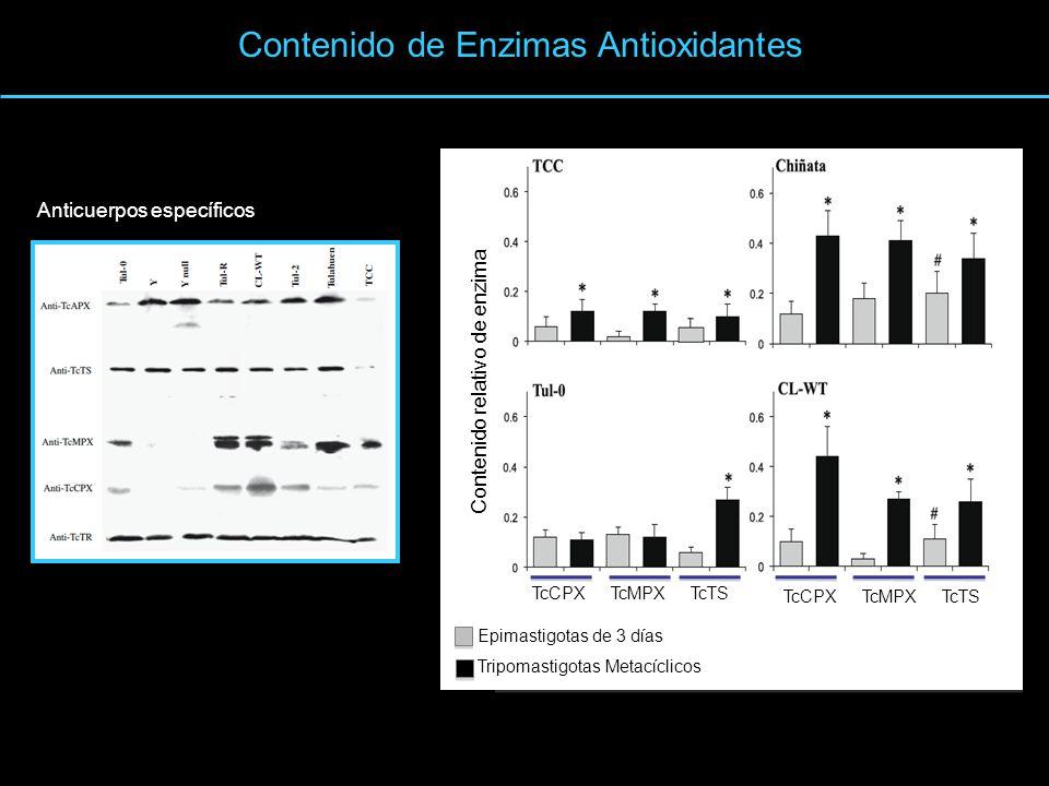 Contenido de Enzimas Antioxidantes