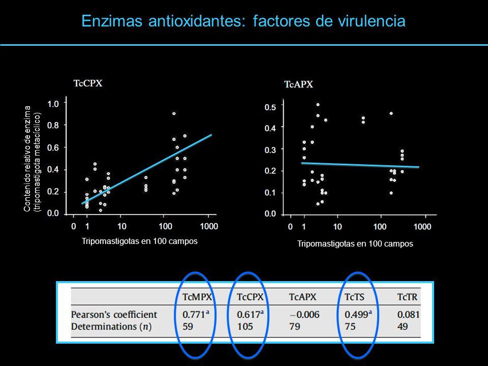 Enzimas antioxidantes: factores de virulencia