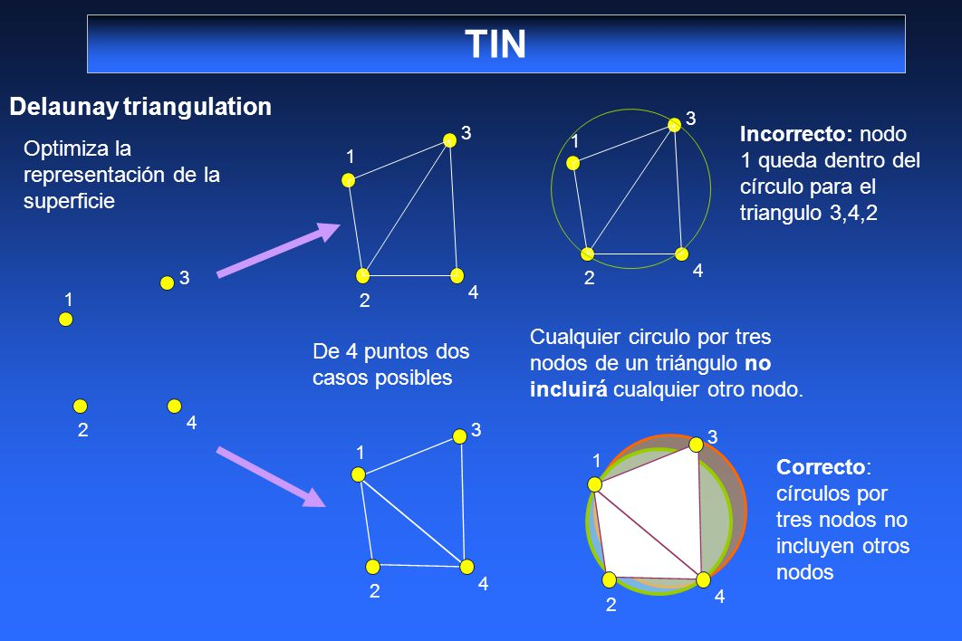 TIN Delaunay triangulation