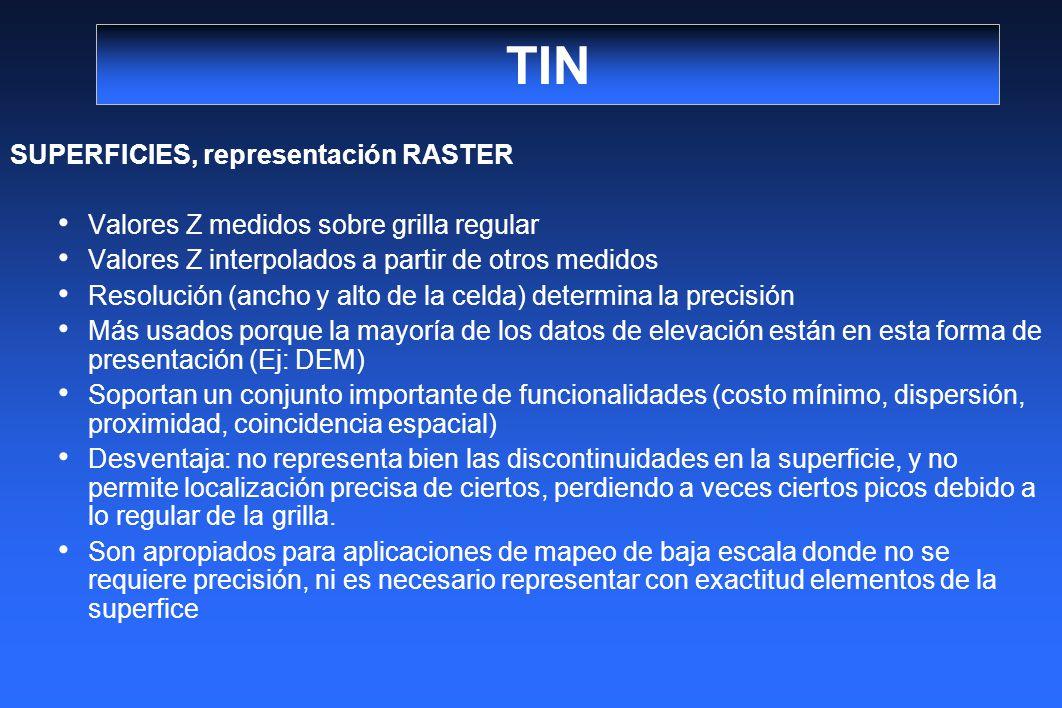 TIN SUPERFICIES, representación RASTER