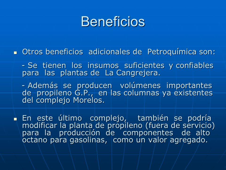 Beneficios Otros beneficios adicionales de Petroquímica son: