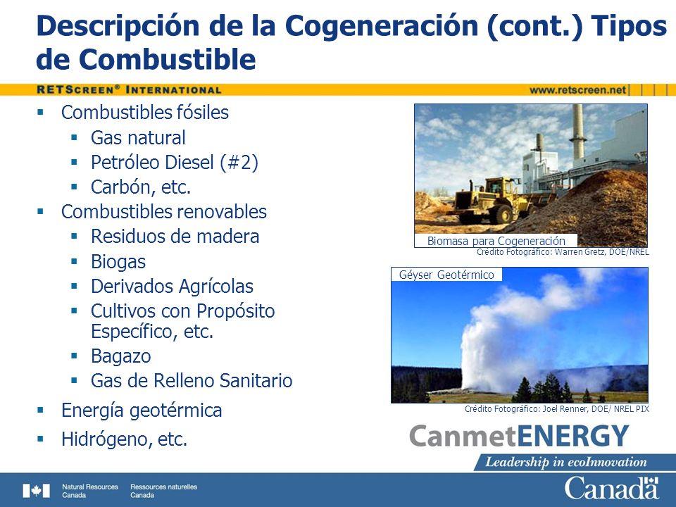 Descripción de la Cogeneración (cont.) Tipos de Combustible