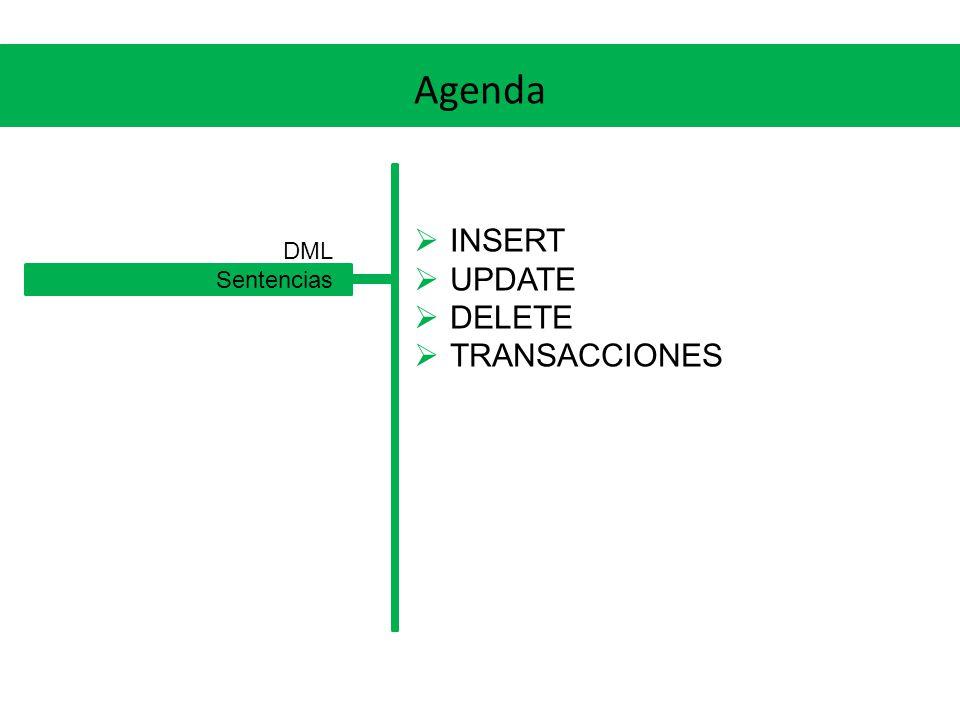 Agenda INSERT UPDATE DELETE TRANSACCIONES DML Sentencias