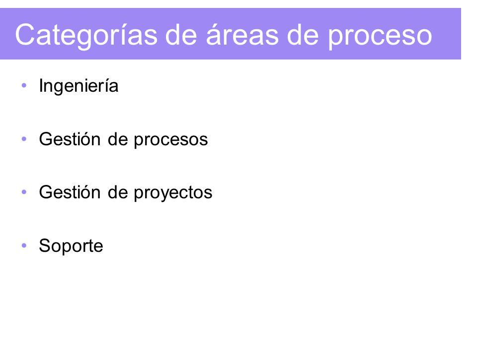 Categorías de áreas de proceso