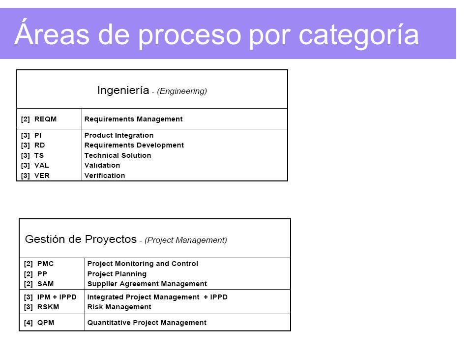 Áreas de proceso por categoría