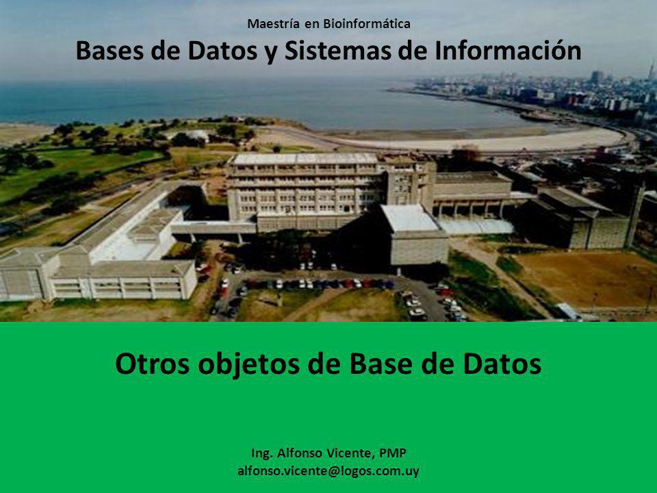 Maestría en Bioinformática Bases de Datos y Sistemas de Información Otros objetos de Base de Datos Ing.