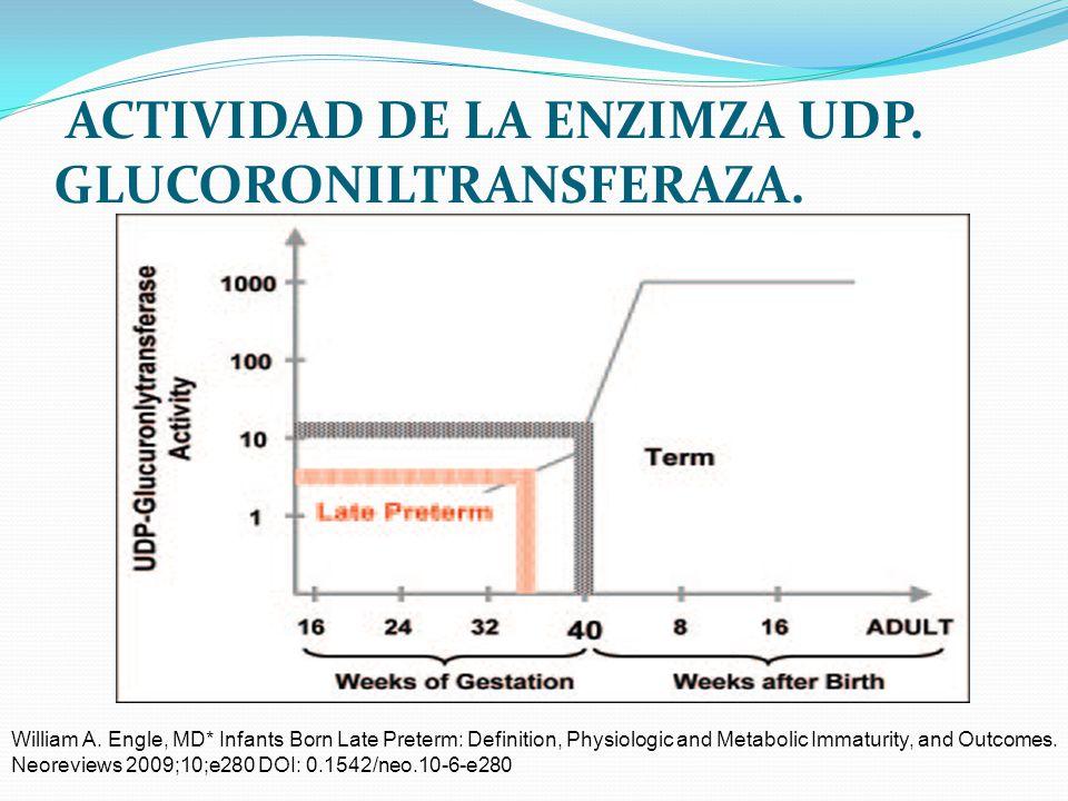 ACTIVIDAD DE LA ENZIMZA UDP. GLUCORONILTRANSFERAZA.
