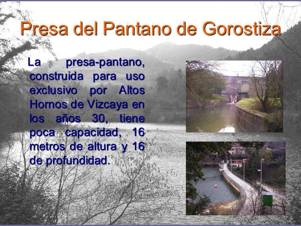 Presa del Pantano de Gorostiza