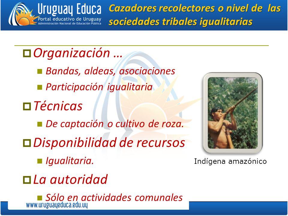 Cazadores recolectores o nivel de las sociedades tribales igualitarias