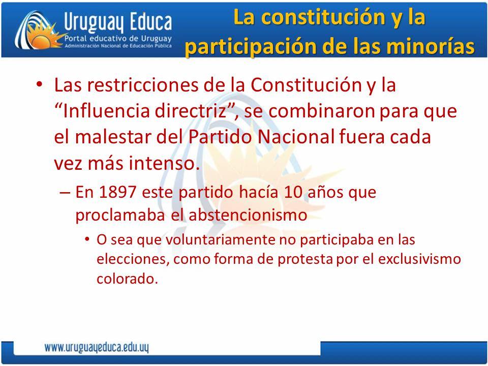 La constitución y la participación de las minorías