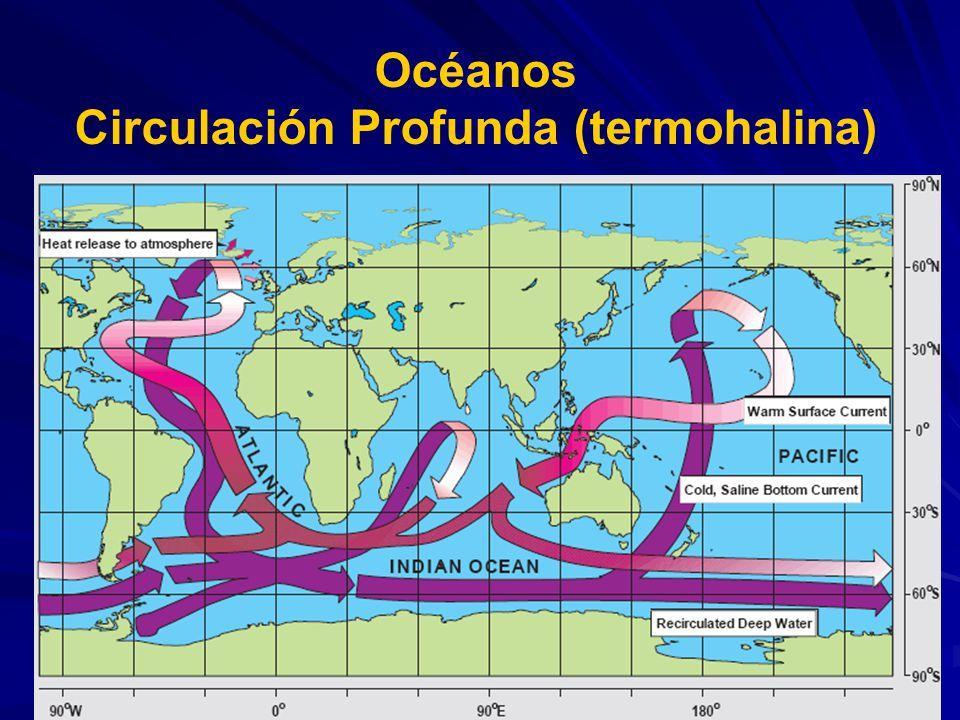 Circulación Profunda (termohalina)