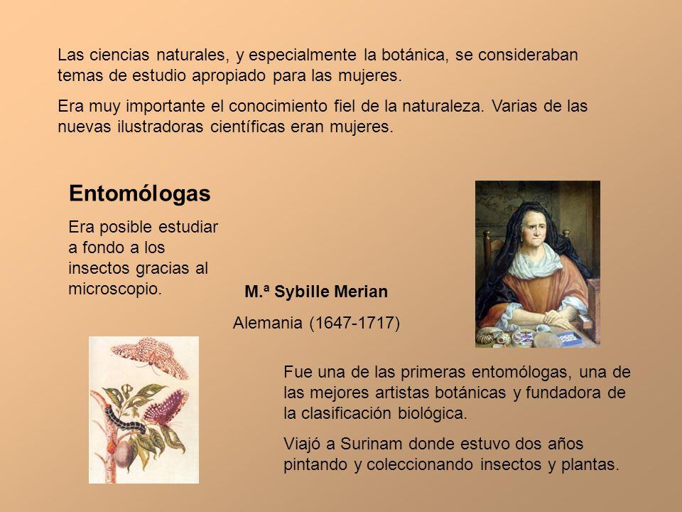 Las ciencias naturales, y especialmente la botánica, se consideraban temas de estudio apropiado para las mujeres.