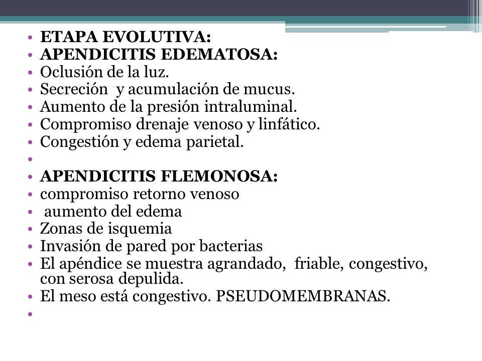 ETAPA EVOLUTIVA: APENDICITIS EDEMATOSA: Oclusión de la luz. Secreción y acumulación de mucus. Aumento de la presión intraluminal.