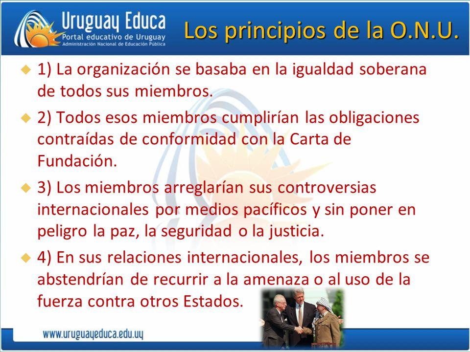 Los principios de la O.N.U.