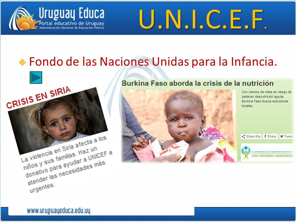 U.N.I.C.E.F. Fondo de las Naciones Unidas para la Infancia.