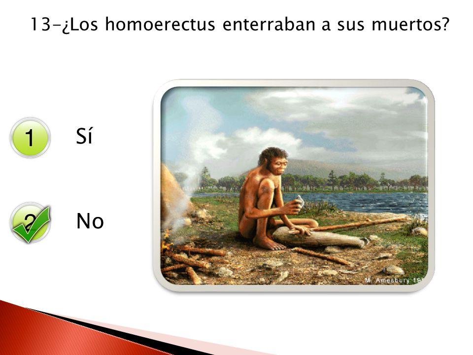 13-¿Los homoerectus enterraban a sus muertos