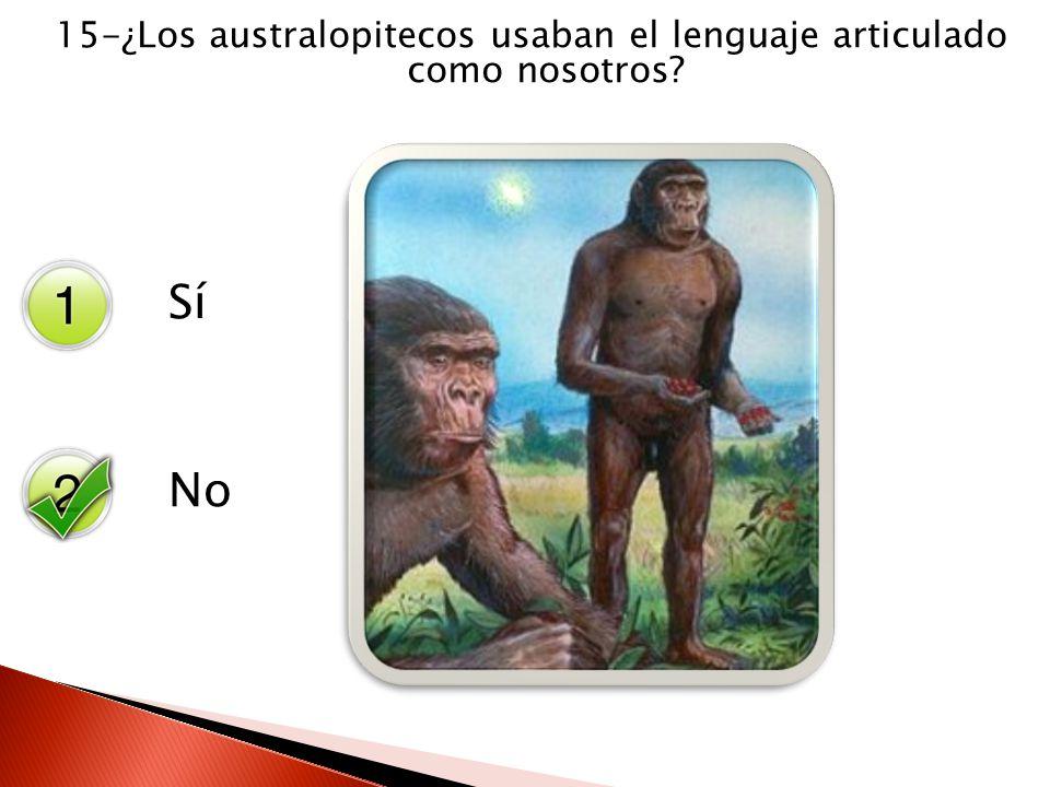 15-¿Los australopitecos usaban el lenguaje articulado como nosotros