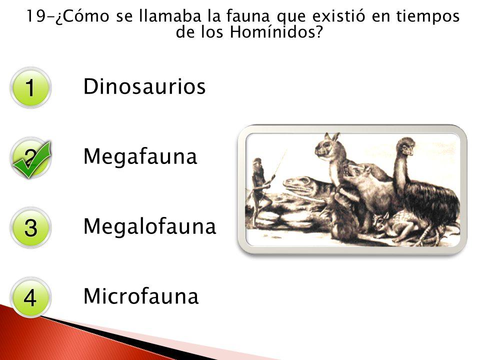 19-¿Cómo se llamaba la fauna que existió en tiempos de los Homínidos