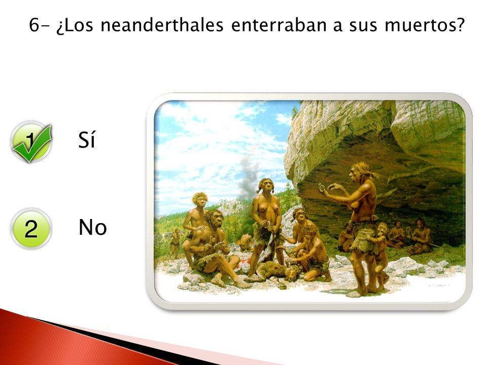 6- ¿Los neanderthales enterraban a sus muertos