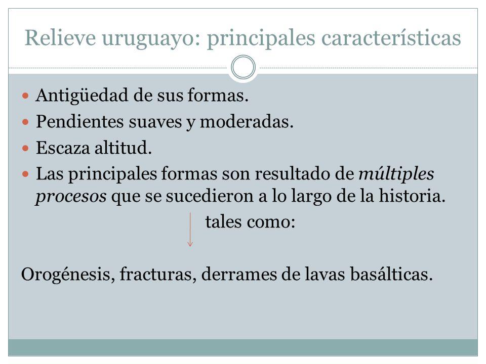 Relieve uruguayo: principales características