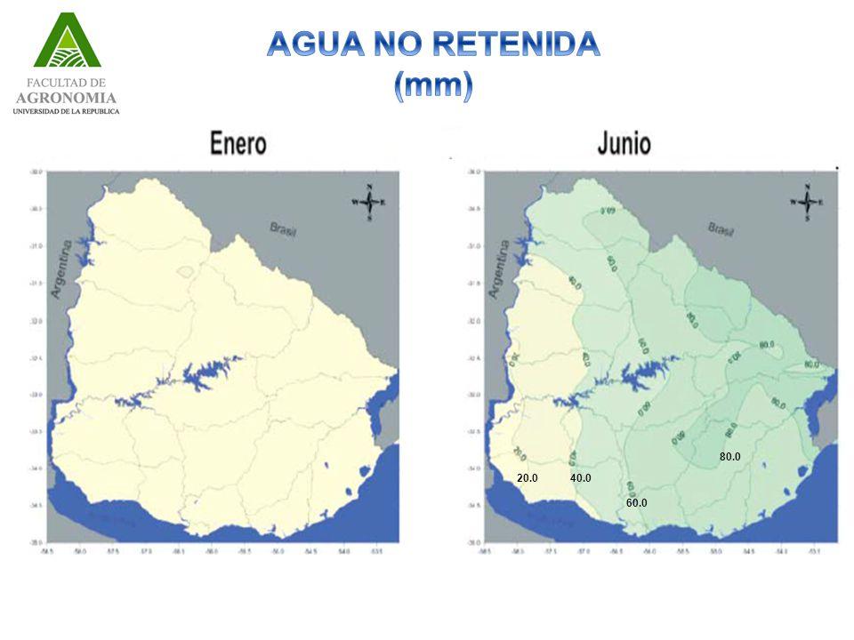 AGUA NO RETENIDA (mm) 80.0 20.0 40.0 60.0