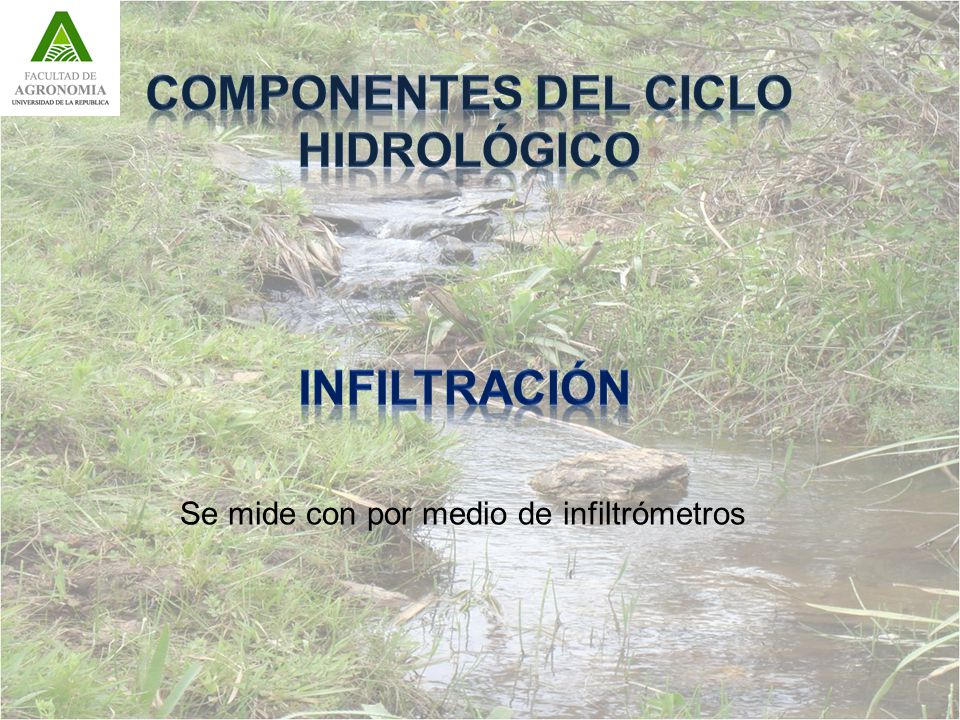COMPONENTES DEL CICLO HIDROLÓGICO