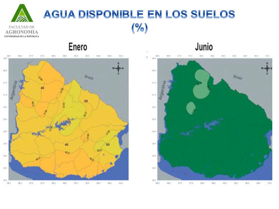 AGUA DISPONIBLE EN LOS SUELOS (%)