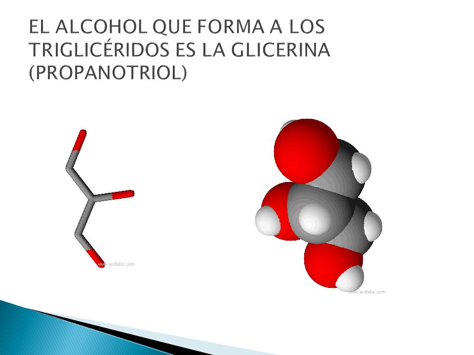 EL ALCOHOL QUE FORMA A LOS TRIGLICÉRIDOS ES LA GLICERINA (PROPANOTRIOL)