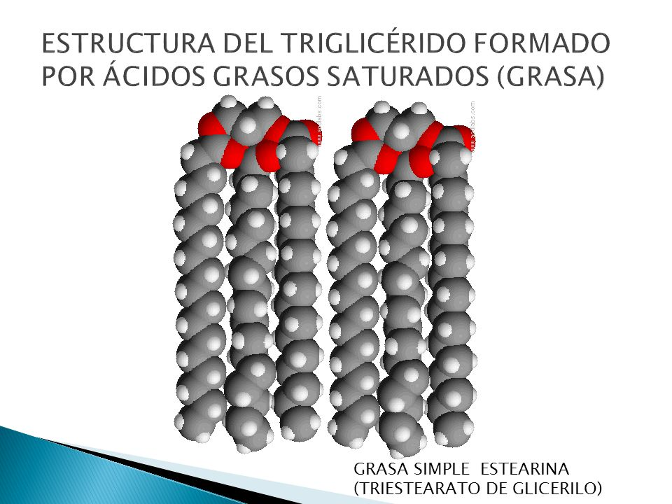 ESTRUCTURA DEL TRIGLICÉRIDO FORMADO POR ÁCIDOS GRASOS SATURADOS (GRASA)