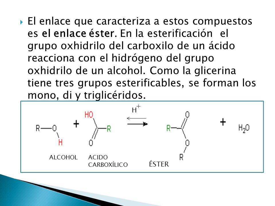 El enlace que caracteriza a estos compuestos es el enlace éster