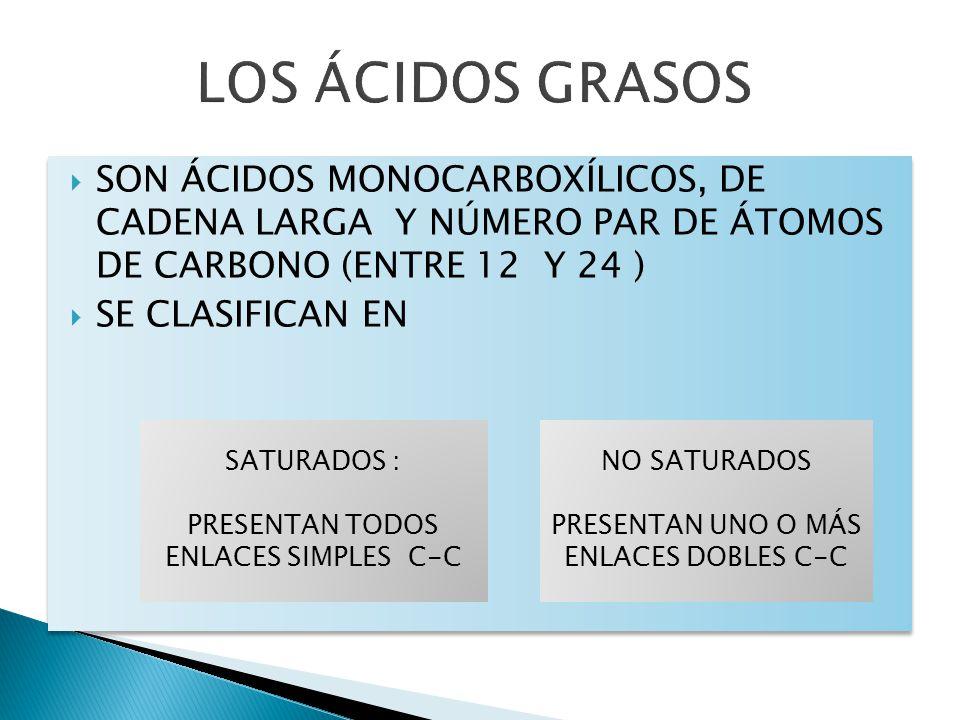 LOS ÁCIDOS GRASOS SON ÁCIDOS MONOCARBOXÍLICOS, DE CADENA LARGA Y NÚMERO PAR DE ÁTOMOS DE CARBONO (ENTRE 12 Y 24 )